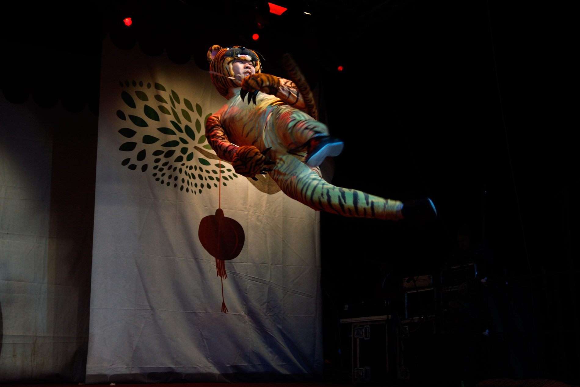 A chinese kungfu practioner displaying the skills of tiger style. Picture: Tony Öhberg for Finland Today