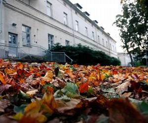 ft-autumn