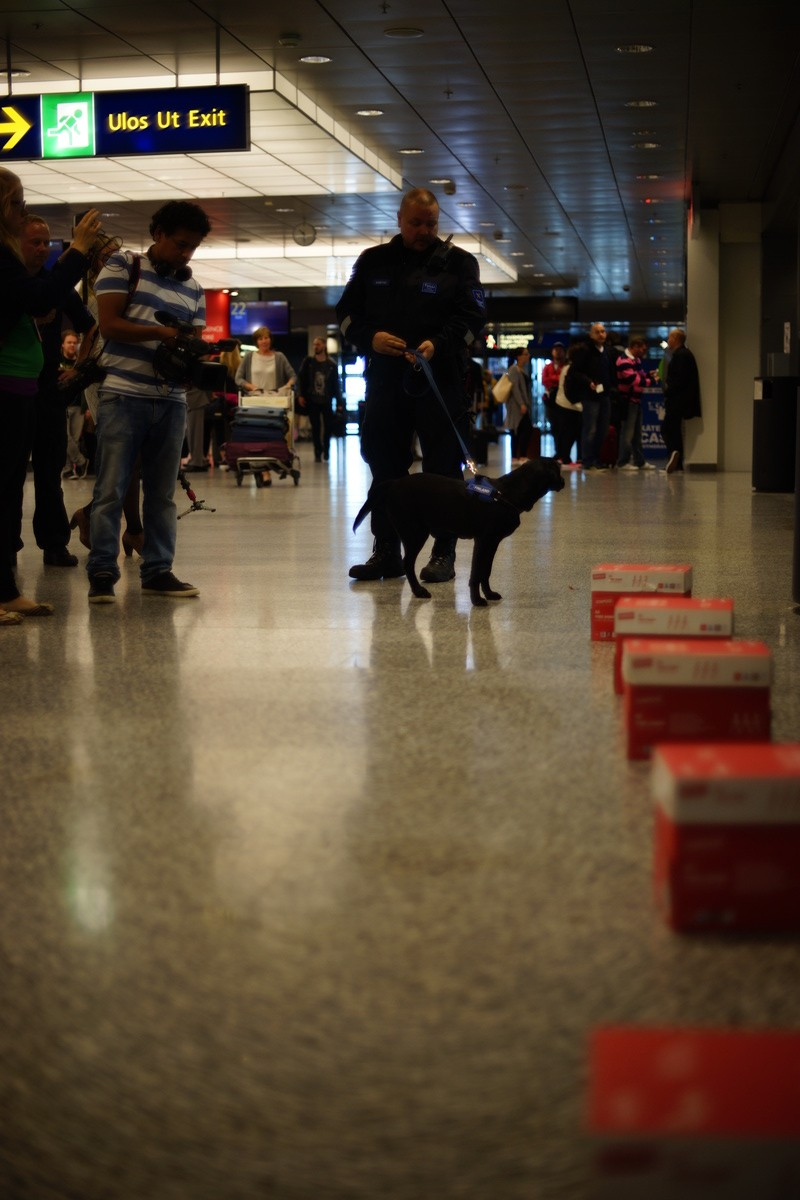 A demonstration where Heila found ammunition. Picture: Morgan Walker for Finland Today