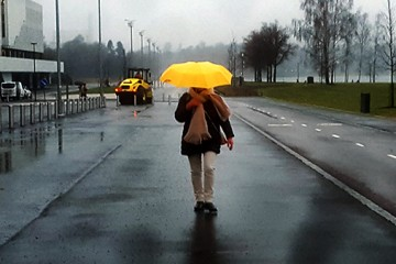 ft-rain-november-final