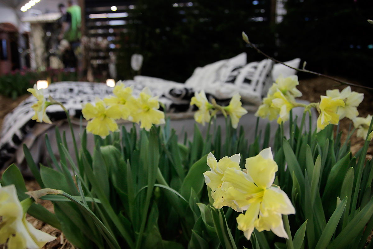 Spring Fair Brings Fresh Ideas For Home, Yard and Cabin