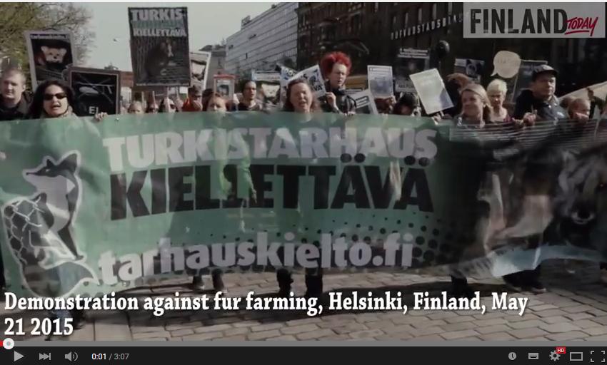 Hundreds Demonstrate Against Fur Farming in Helsinki