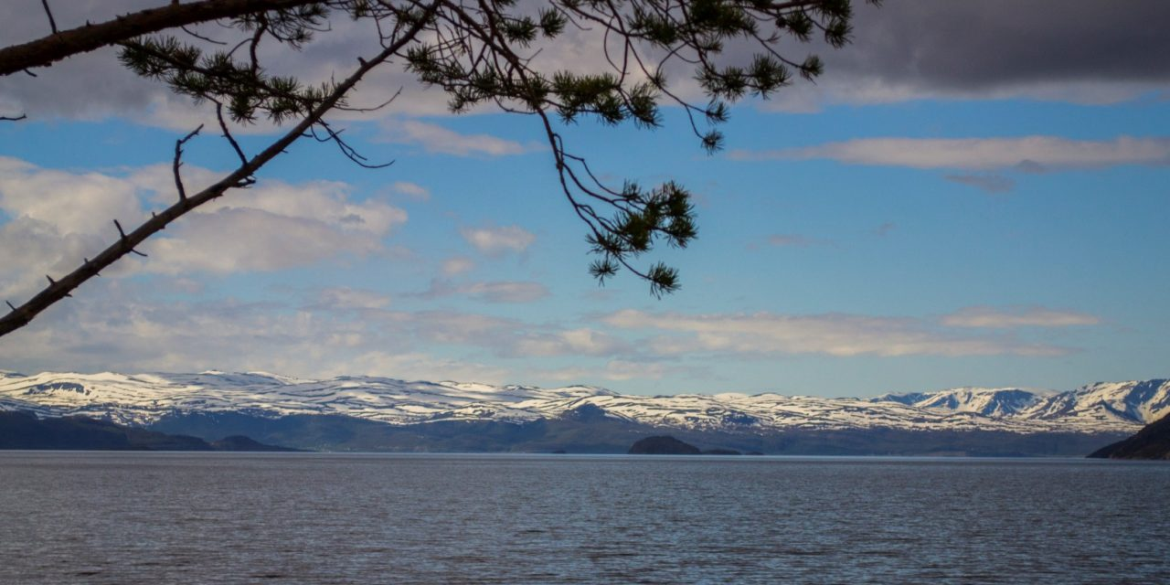 Finland and Norway Find Positive Effect on Nature from Nornickel Modernization