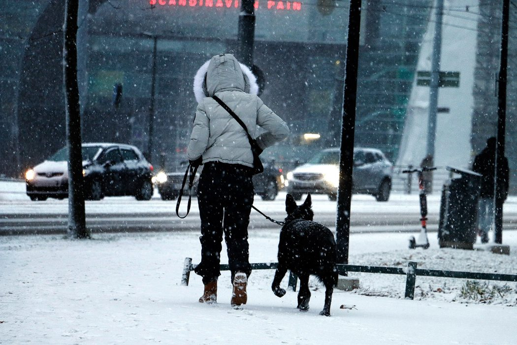 VIDEO AND PICTURES: The First Snow Blankets Helsinki
