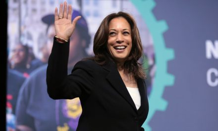 President Niinistö Has a 'Long and Pleasant' Phone Call with U.S. VP Kamala Harris