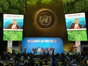 President Niinistö at the UN Climate Summit: Finland's National Climate Targets  Belong to the Most ...