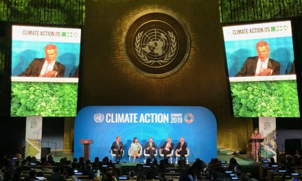 President Niinistö at the UN Climate Summit: Finland's National Climate Targets  Belong to the Most Ambitious Ones in the World