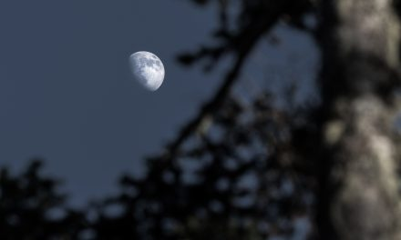 From Espoo to the Moon; Nokia Partners with NASA to Build First High-Performance Mobile Network on the Lunar Surface