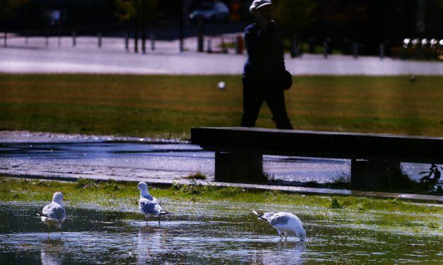 Powerful Thunderstorms Cause Floods Across Helsinki