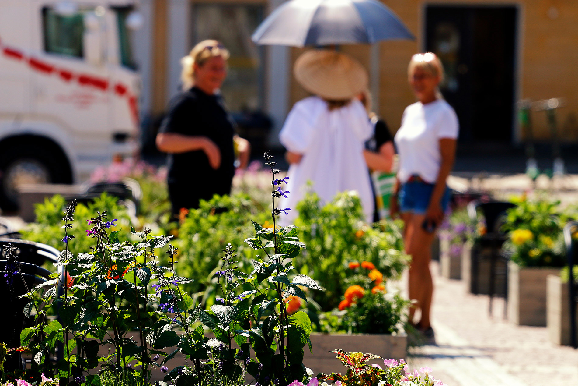 There are about 200 planter boxes filled with herbs and useful plants to separate the restaurant spaces from each other. Picture: Tony Öhberg/Finland Today