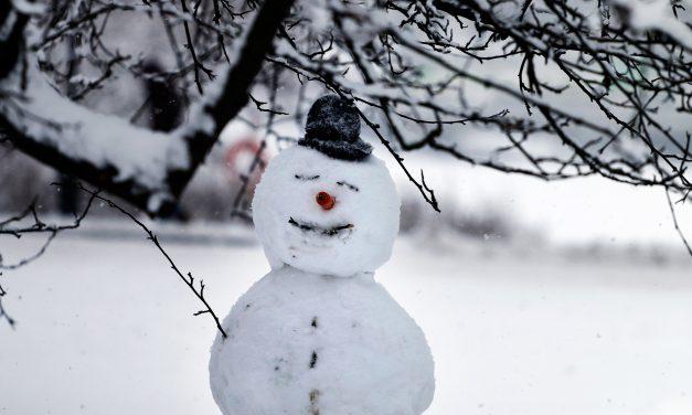 GALLERY: Blizzard Slams Helsinki