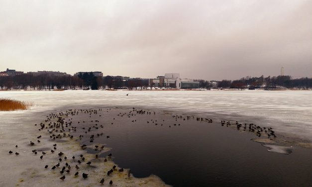 Temperatures to Climb Close to 10 Degrees in Southern Finland